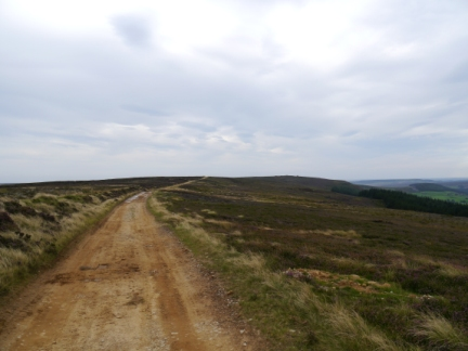 Westside Road, the old track that runs across the moorland ridge