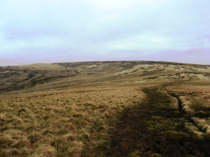 Looking back at Black Hill from Tooleyside Moss