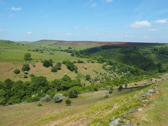Looking across Bretton Clough towards Burton Bole