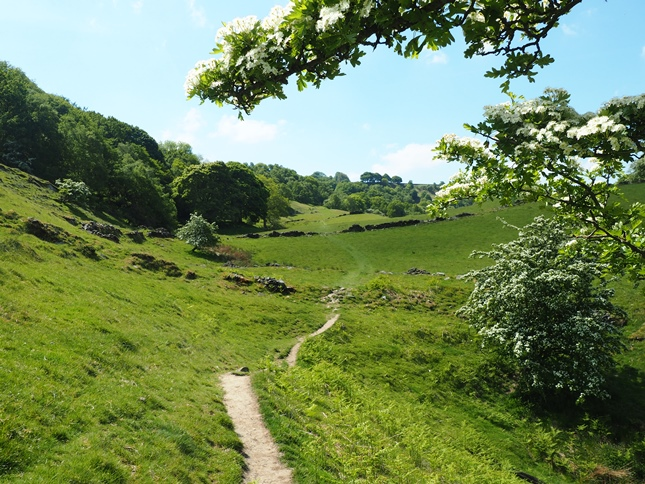 Footpath heading away above Bretton Clough