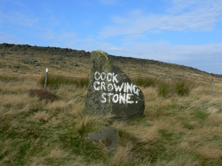Cock Crowing Stone? You decide.
