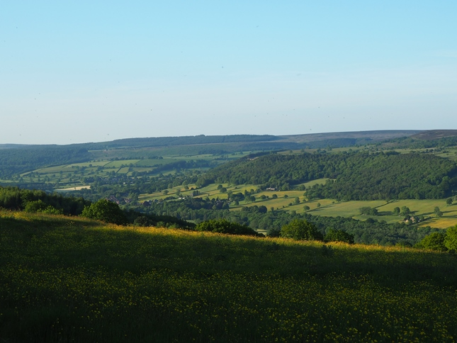 The view of the Derwent valley from the northern end of Stanton Moor Plantation