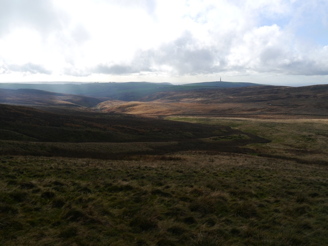 The view of High Moor upon emerging from the forest