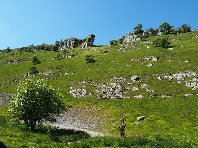 The limestone flanks of Lathkill Dale