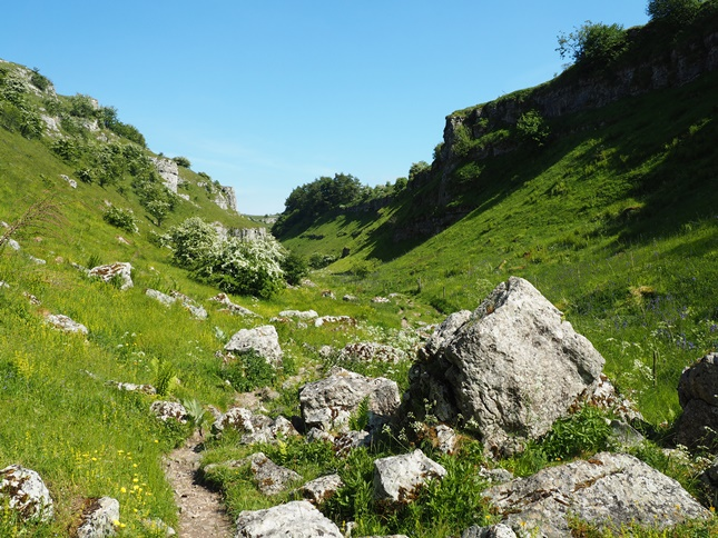 Another view back in the upper reaches of Lathkill Dale