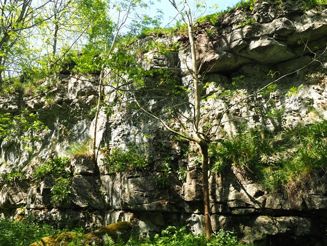 Limestone scar at the head of Lathkill Dale