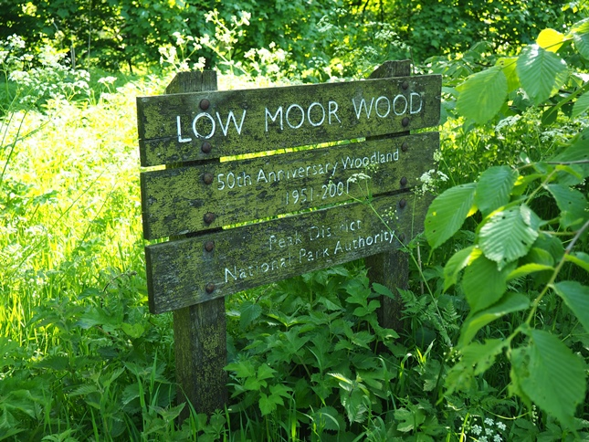 Entering Low Moor Wood