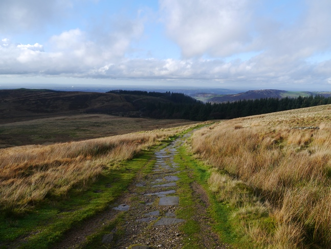 Looking back down the path to the top of the forest with Tegg's Nose on the right