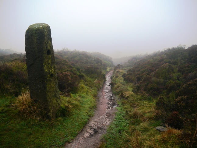 An old gate post by the mist enshrouded path