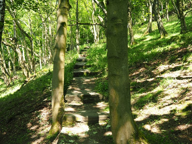 The steps climbing up through the woods on to Eyam Edge