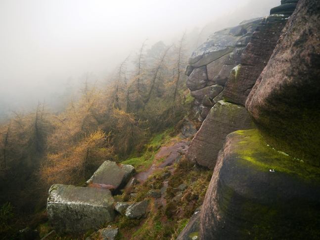 A view down from the Roaches