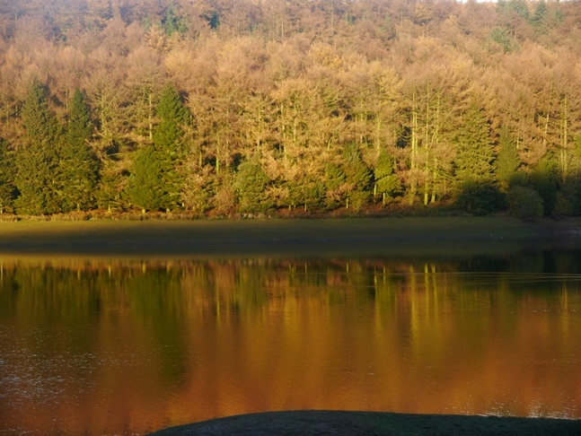 Autumn colours at Trentabank Reservoir