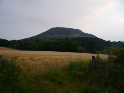 Eildon North Hill from near the Rhymer Stone