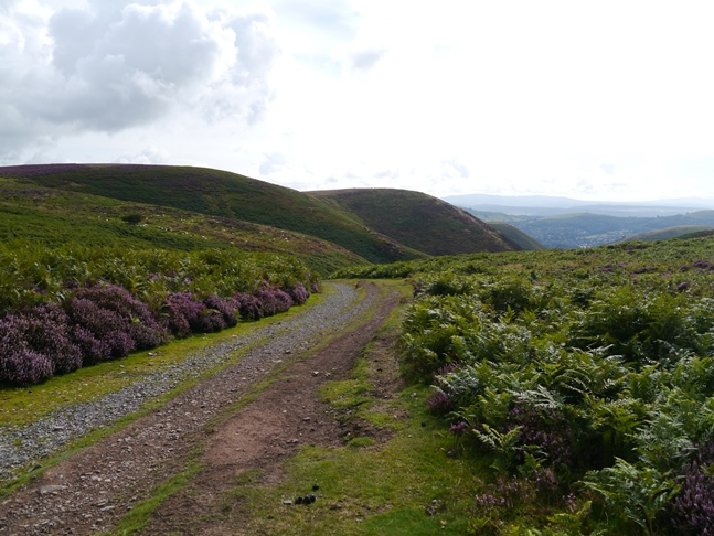 At the top of Mott's Road as it drops in to the Carding Mill Valley
