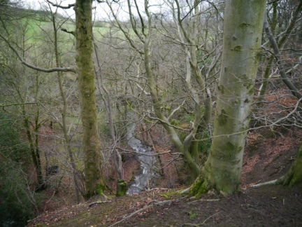 Looking down into Catlow Gill