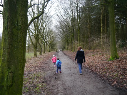 Setting off through the woods on the Chippendale Way