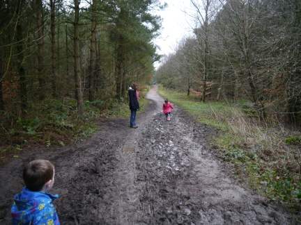 Many of the woodland paths were very muddy