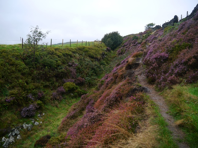 The colorful path just above Chapel Lane