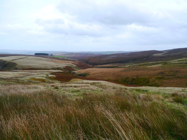 Haworth Moor from the Pennine Way