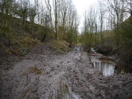 And the award for muddiest path of the year goes to...