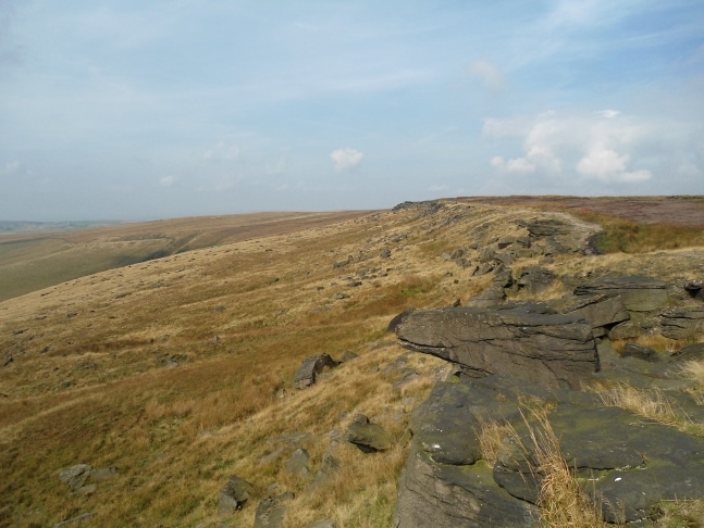 The dark gritstone edge of Northern Rotcher
