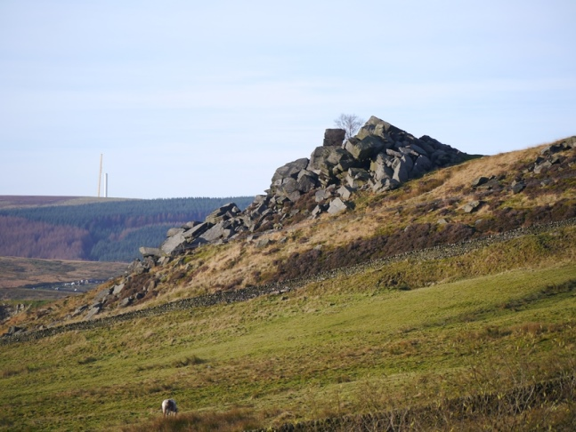 Looking across Stannally Clough to Orchan Rocks
