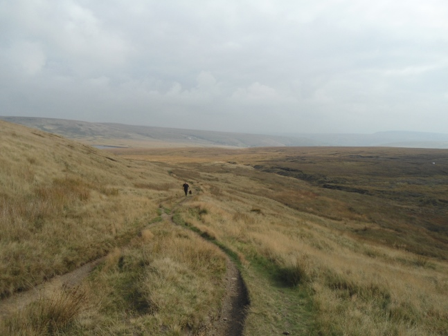 Looking back down the old packhorse route known as Rapes Highway