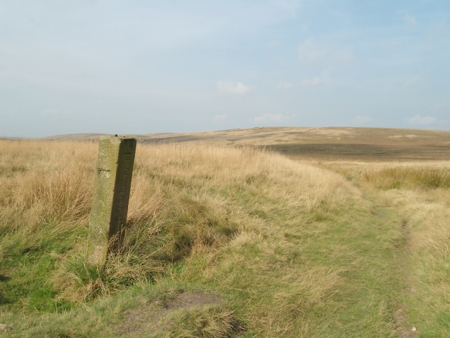 Rapes Hill near the top of the bridleway