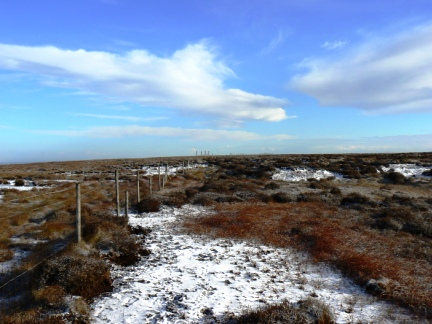 The boundary fence running along the top of Moss Moor Edge