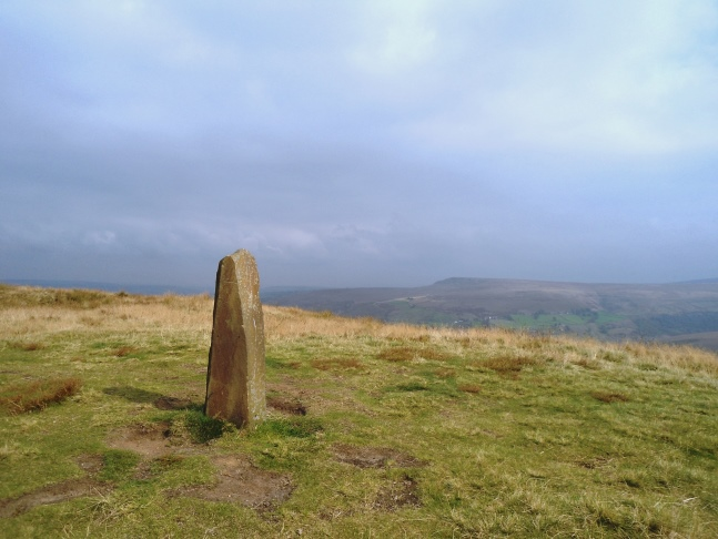 Waymarker near the summit of Pule Hill