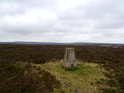 The trig point on Withins Height