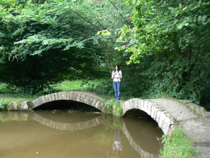Arched bridges in Sunnyhurst Wood