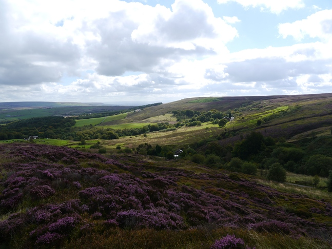 Looking across Duckshaw Clough towards Black Hill