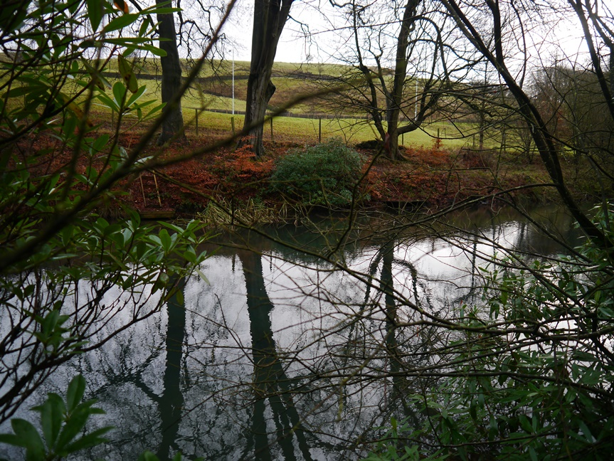 One of the Cliviger Fish Ponds