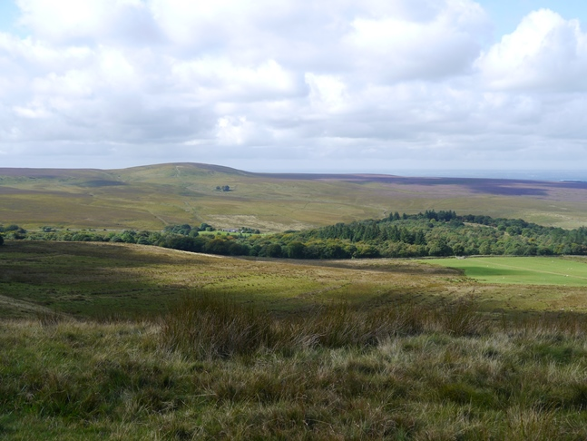 Great Hill with Tockholes plantation in the valley below