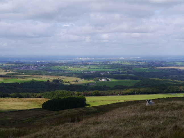 The view towards Preston